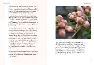 Diary of Modern Country Gardener Internal Spread 1