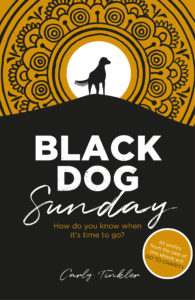 Black Dog Sunday a novel cover image